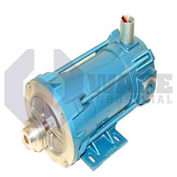 STF Washdown Motor
